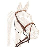 Regalo de caballos en españa